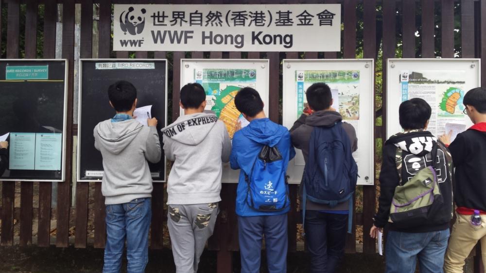 https://www.npc.edu.hk/sites/default/files/1_917.jpg