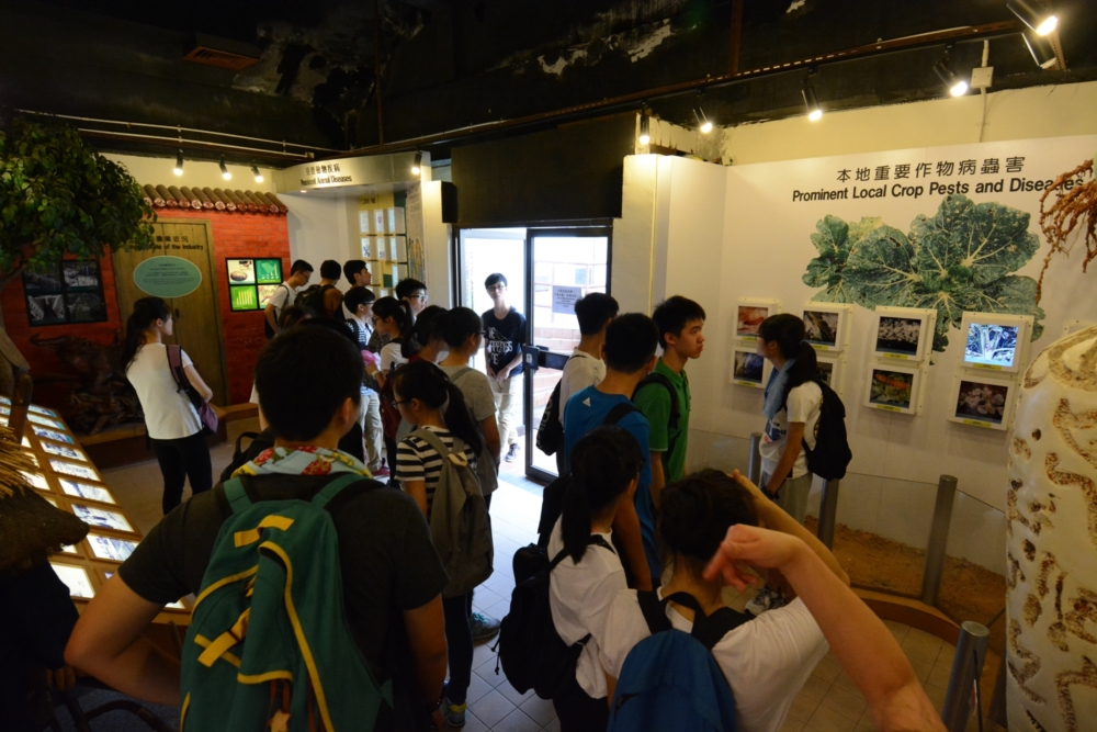 http://www.npc.edu.hk/sites/default/files/5_884.jpg