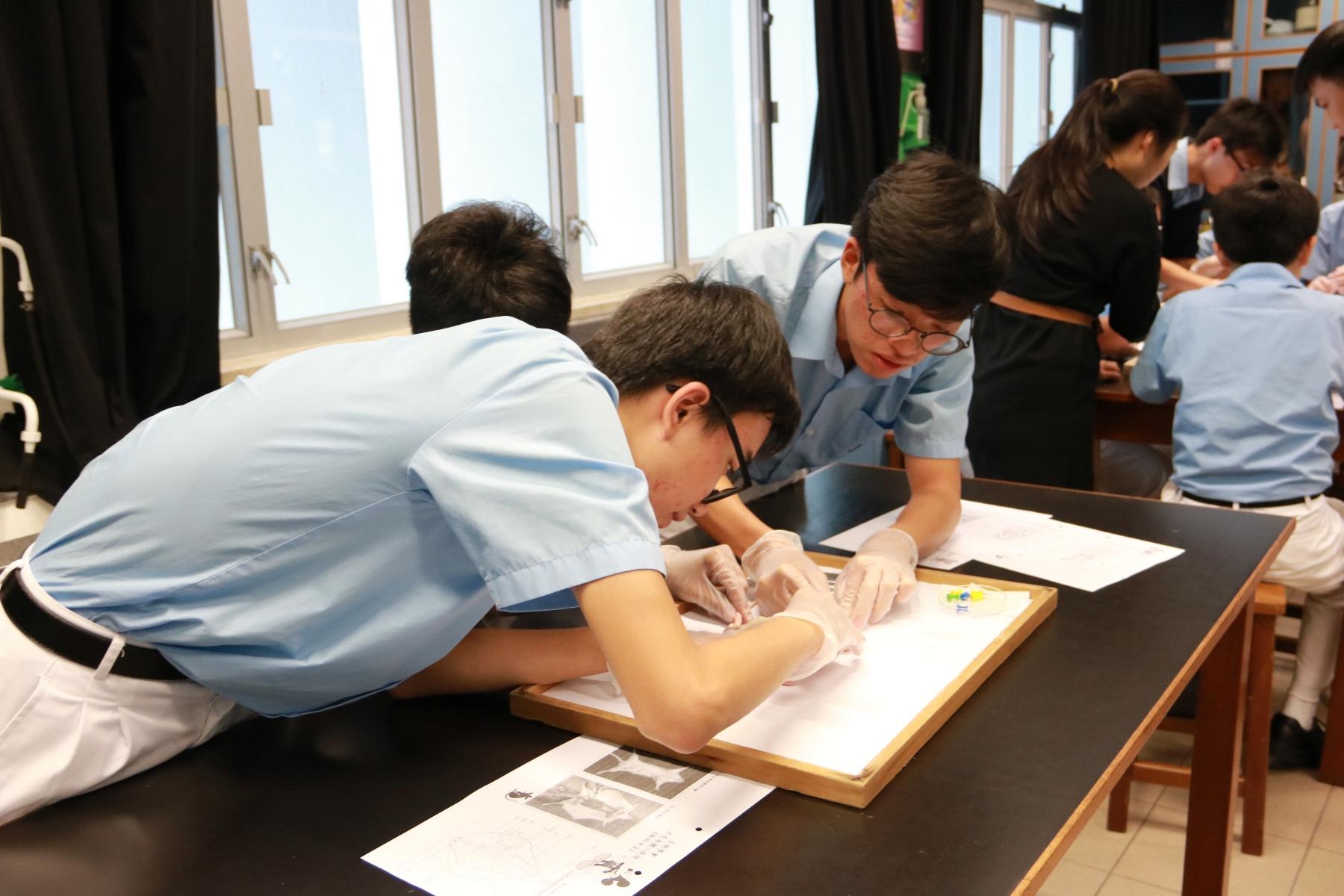 http://www.npc.edu.hk/sites/default/files/img_7407.jpg